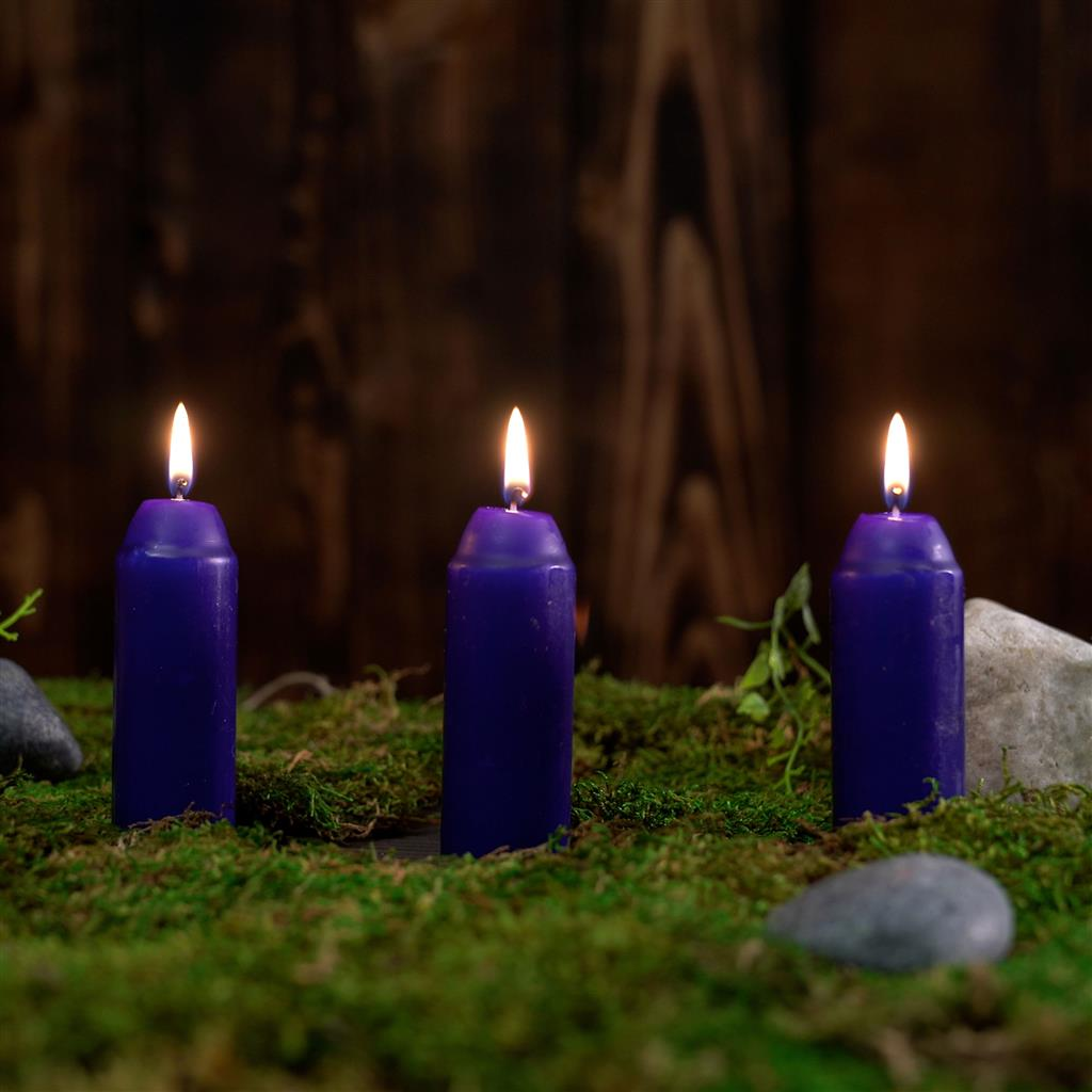 L-CAN3PK-C_UCO_Candle_Citronella_moss.jpg